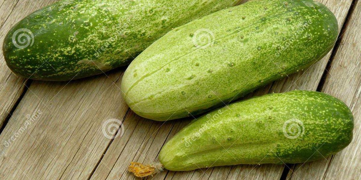 富硒小黄瓜-健康首选