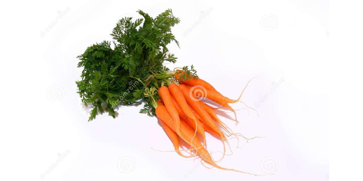 养生活萝卜-富含高维生素C